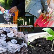 Rituel ceremonie laique : comment émouvoir vos invités !