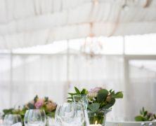 Vaisselle écologique : quand l'art de la table passe en mode écolo